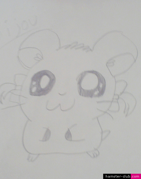 Hamster Drawing of Bijou of Hamtaro